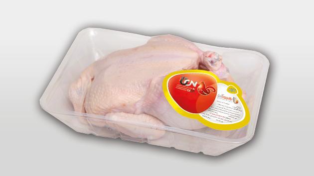 مرغ بشقابی،1800 گرمی بی تا ، گروه بهپرورآریا